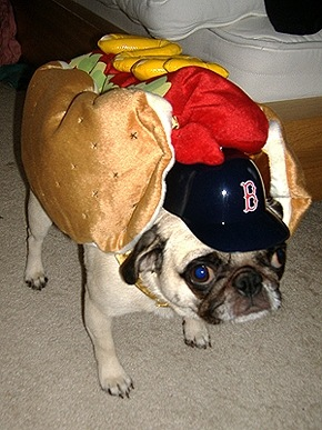 The_real_hot_dogs (7)[6]